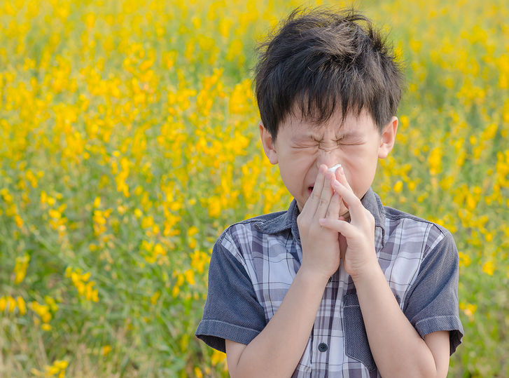 Sneeze No More: Hay Fever Help with Homeopathy 1