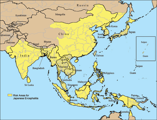 Study: Japanese Encephalitis Controlled by Homeopathic Belladonna - Homeopathy Plus