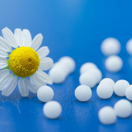 Homeopathy: an Introduction 4
