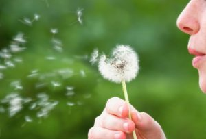 Treating Allergies with Homeopathy 1
