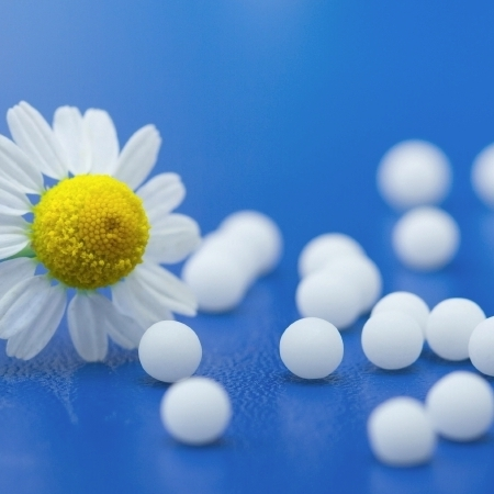Welcome to the Homeopathy Plus site! 5