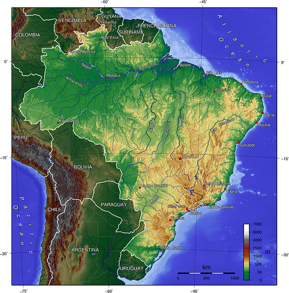 Homeopathy survived plot in Brazil 1