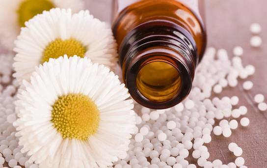 For homeopathic practitioners: New survey on homeoprophylaxis 14