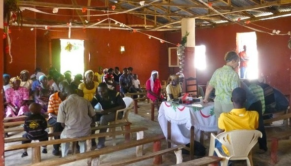 Haitians use homeopathy for Chikungunya 5