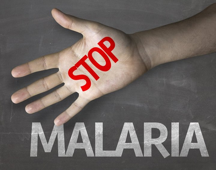 Homeopathy for malaria and other mosquito-borne diseases 2