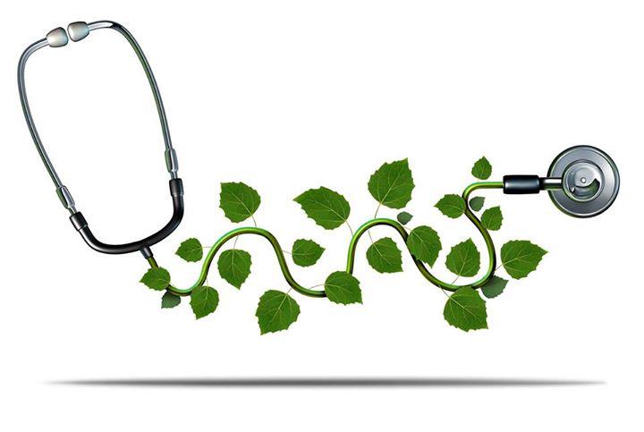 Homeopathy - an effective alternative says medico 3