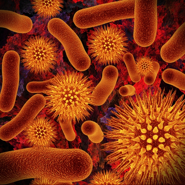 Realistic rendering of bacteria - in red colors