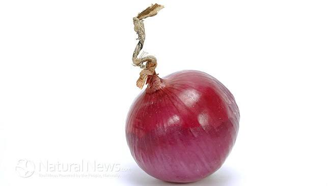 Red Onion – More than Just Food 10