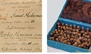 Early_Homeopathy
