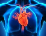 Interview with a homeopath and cardiologist 2