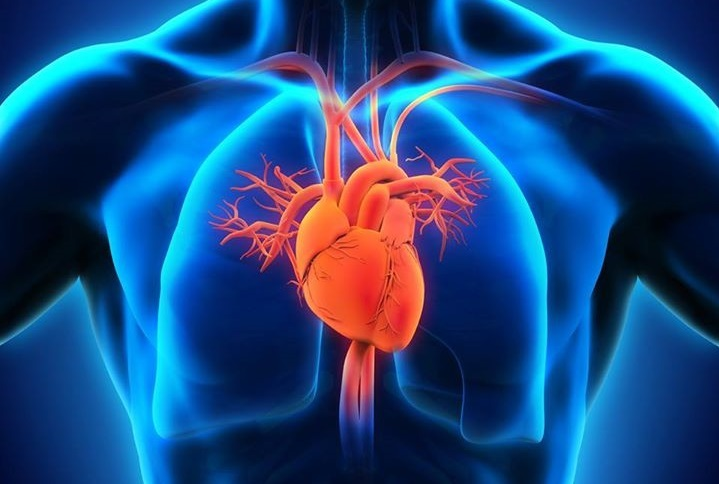 Interview with a homeopath and cardiologist 4
