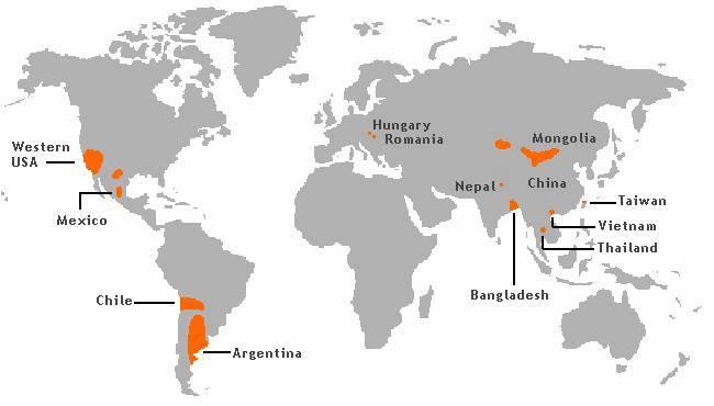 Arsenic_Poisoning_Around_the_World