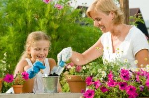 3 homeopathic medicines for spring aches and pains 2