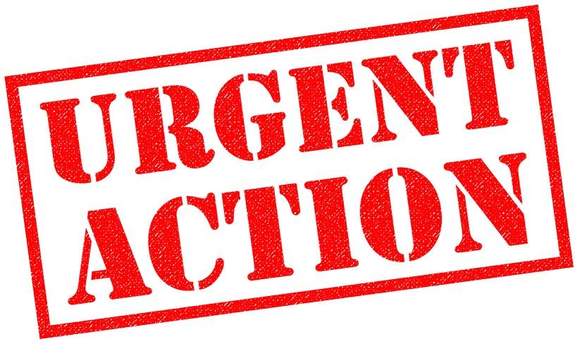 TGA Consultation - Urgent Help Needed! 2