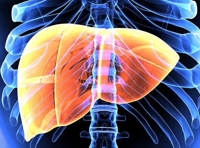 Study: Hepatitis Treatment 5