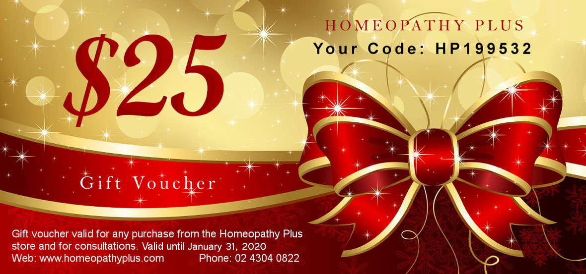 2019 Christmas Certificate/Coupon - A Gift for You 1