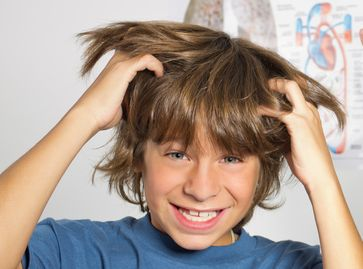 Remedies for Head Lice 4
