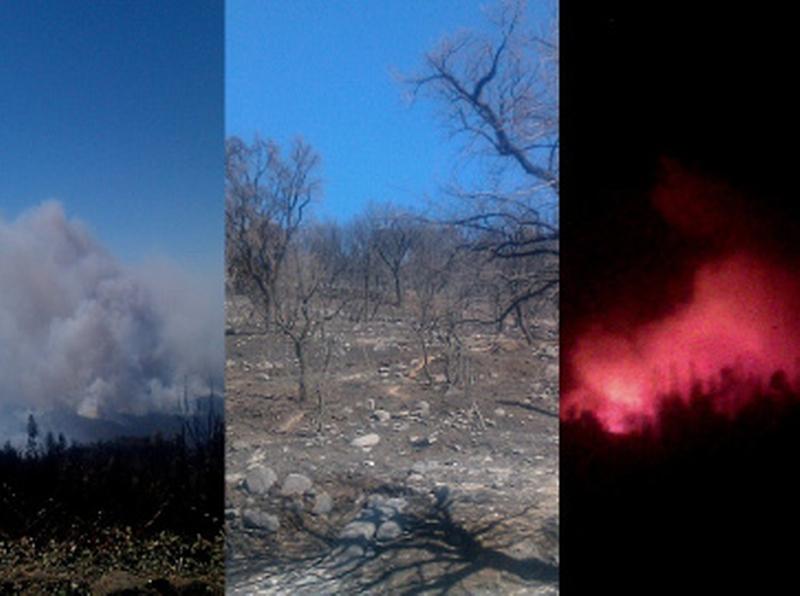 Analyzing the Pyromaniac 1
