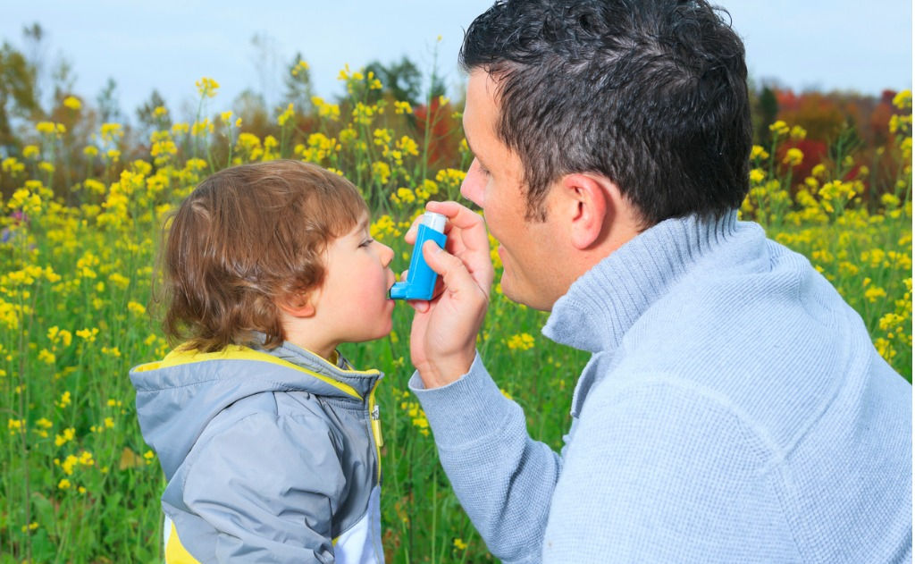 Study: Homeopathy for Asthma, Eczema, Food Intolerances, and Hay Fever 5