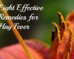 Eight Remedies for Hay Fever 7