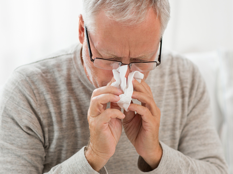 Hay Fever and Rhinitis 1