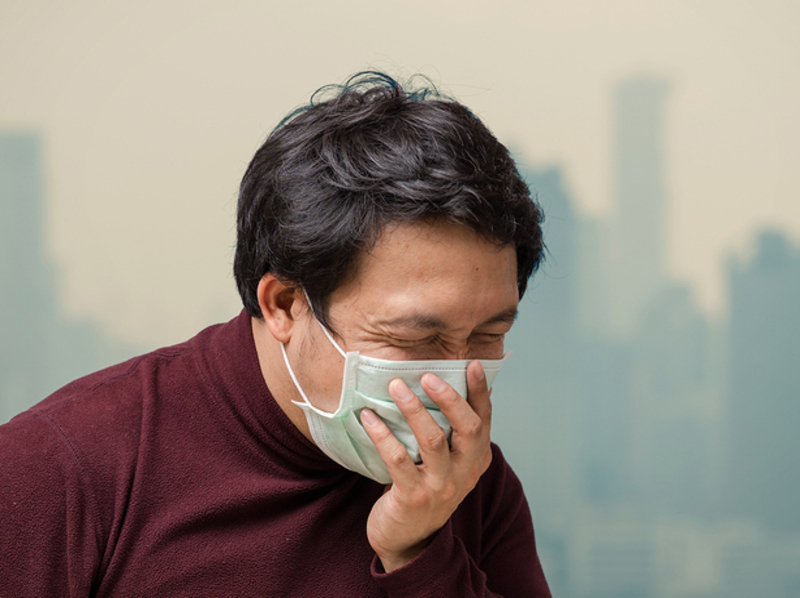 Homeopathy and Air Pollution 3