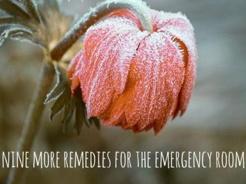 Emergency First-aid Remedies 1
