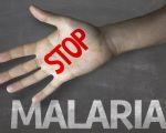 Mosquito-borne Diseases 2