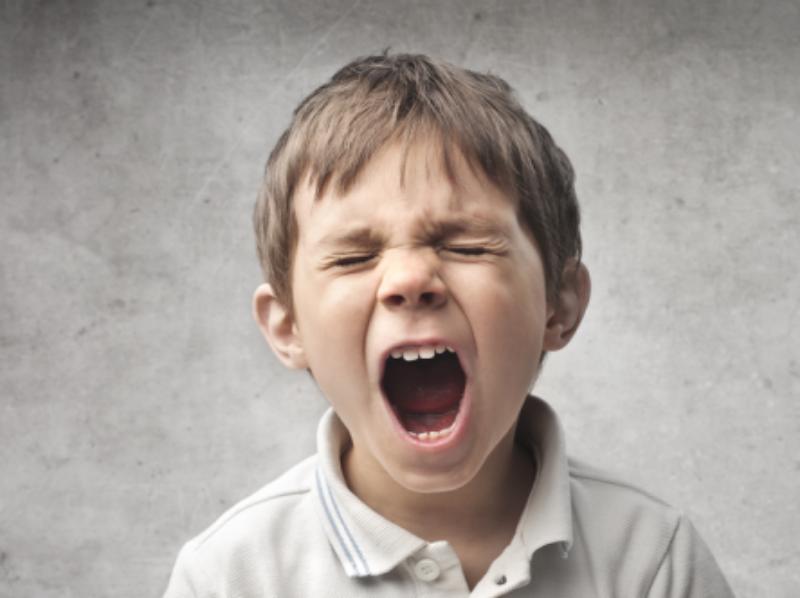 Hypersensitive and Intolerant Chamomilla 1