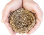 Empty Nest Syndrome 1