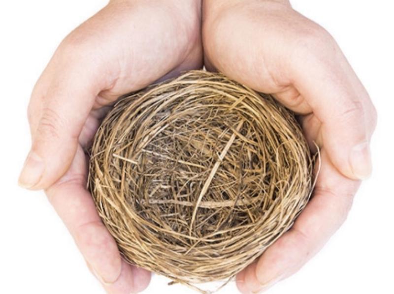 Empty Nest Syndrome 4