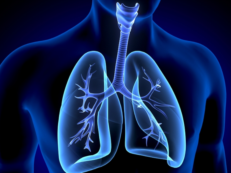 Homeopathy and Breathing 1