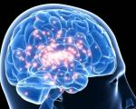 Epilepsy in a Woman of 25 4
